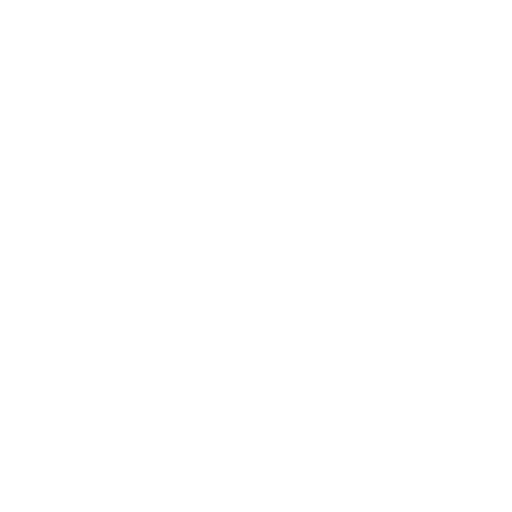 z logo white